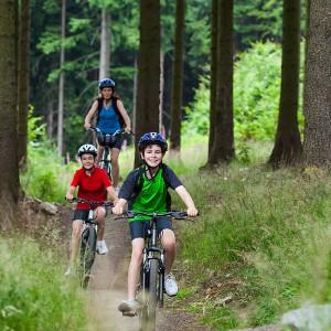 forest-summer-holidays