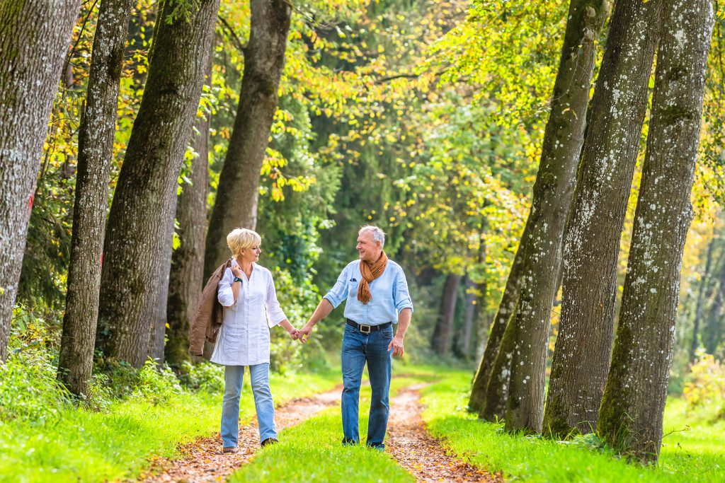 A couple walking along tree lined paths through the woods
