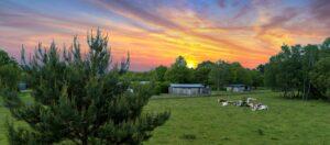 Sherwood-Hideaway-Sunset-Drone